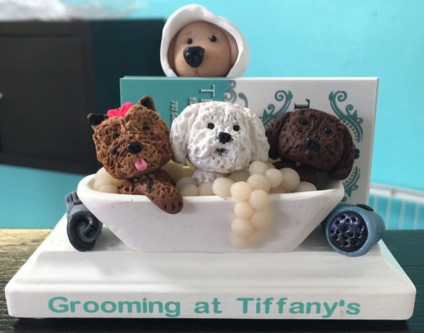 Upscale pet grooming salon