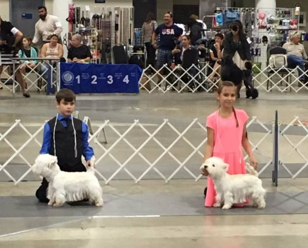 Titusville Dog Show Team